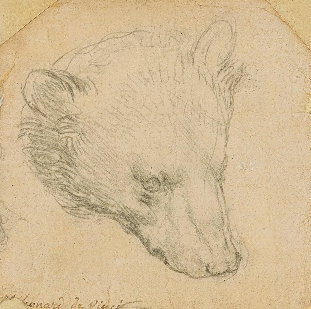 Rysunek Leonarda da Vinci wylicytowany w Christie's za 12,1 mln funtów